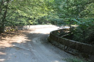 "The ""New"" Bluff Creek Bridge"